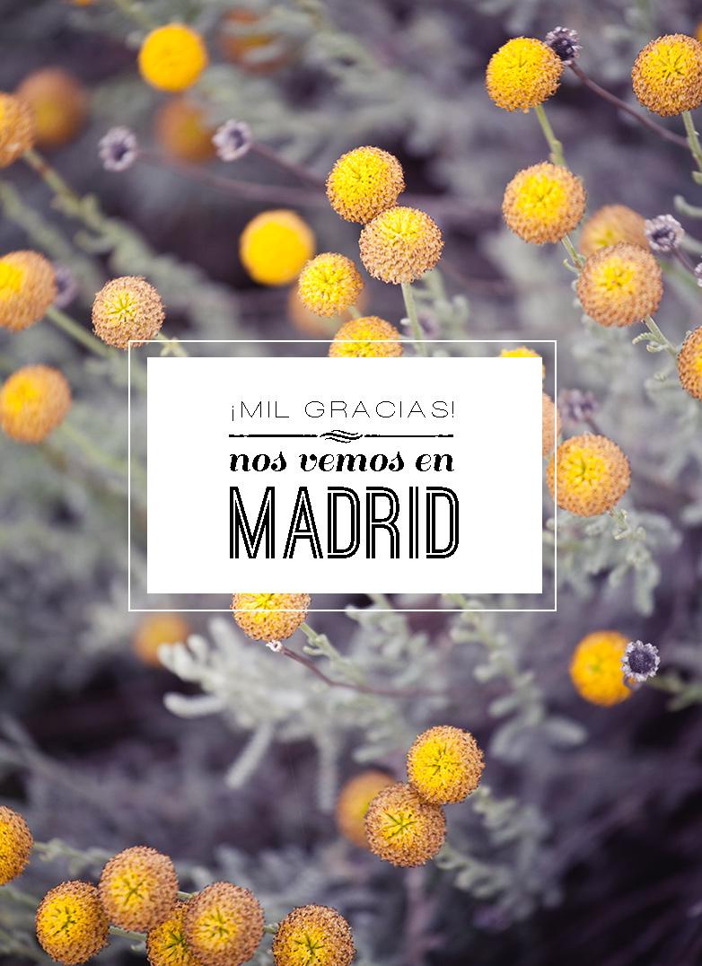 concurso_madrid_neima_pidal_05